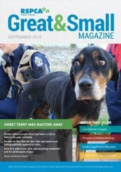 RSPCA WA Great & Small magazine cover September 2019