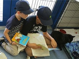 Children reading to a shelter cat at RSPCA School Holiday Program